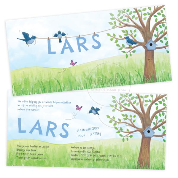 Geboortekaartje van Lars