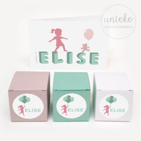 Stickertjes Elize met doosje