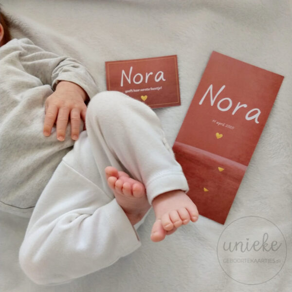 Foto van de voetjes van Nora met het geboortekaartje