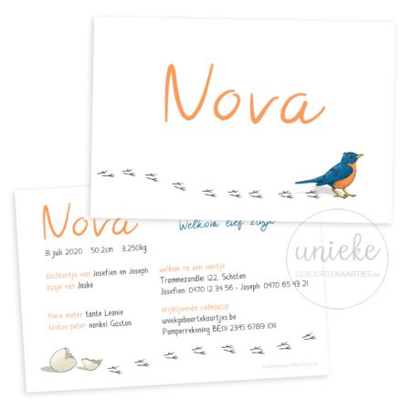 Voorkant en achterkant van het geboortekaartje van Nova
