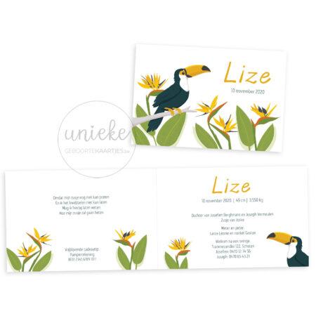 Voorkant en binnenkant van het kaartje van Lize met een toekan