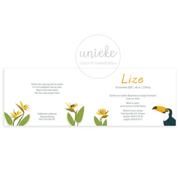 Binnenkant van het kaartje van Lize met een toekan