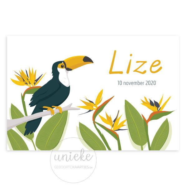 Voorkant van het kaartje van Lize met een toekan