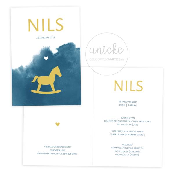Geboortekaartje van Nils