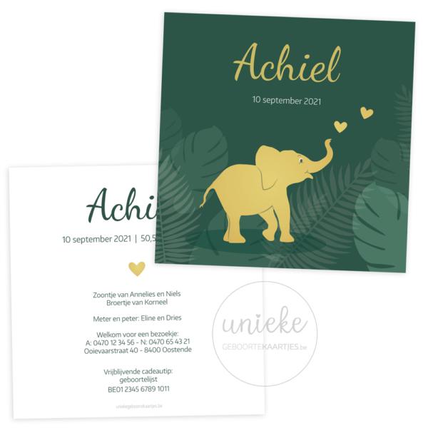 Geboortekaartje van Achiel