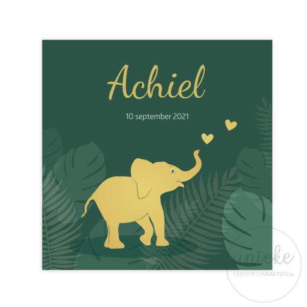 Voorkant van het geboortekaartje van Achiel