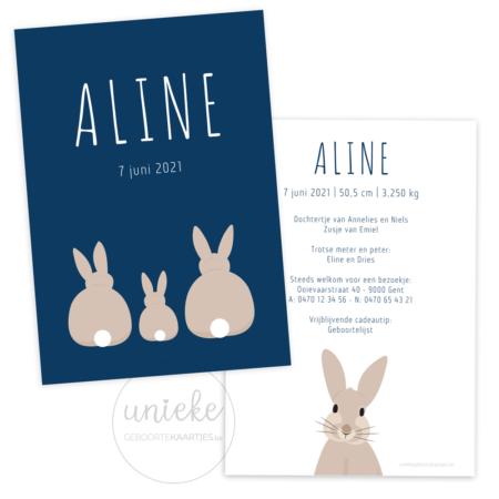 Geboortekaartje van Aline