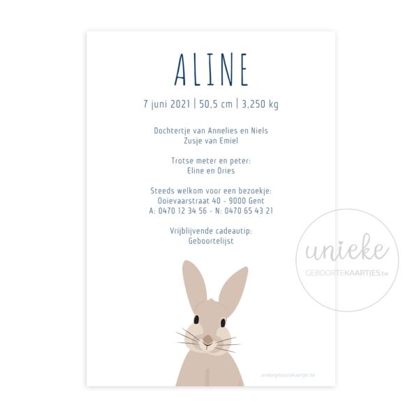 Geboortekaartje Aline Achterkant