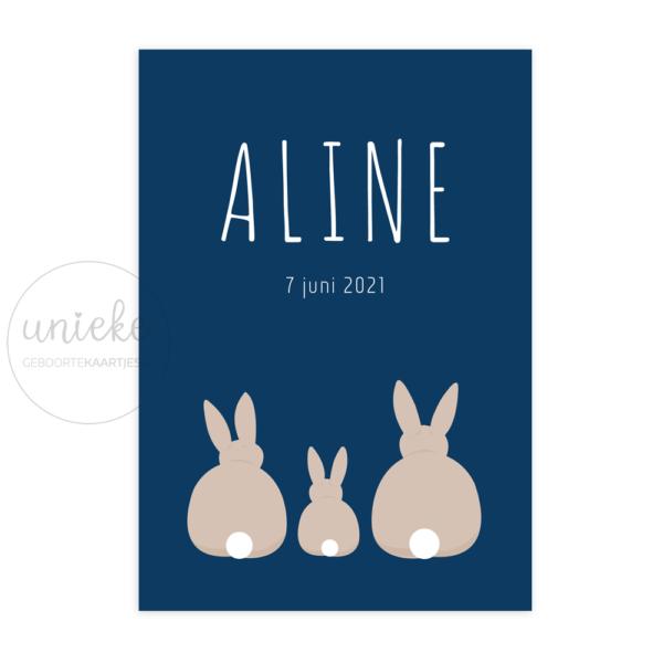 Voorkant van het geboortekaartje van Aline