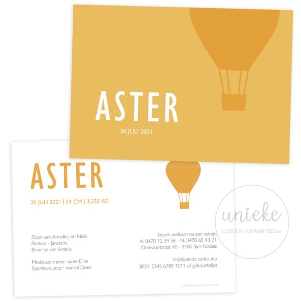 Geboortekaartje van Aster