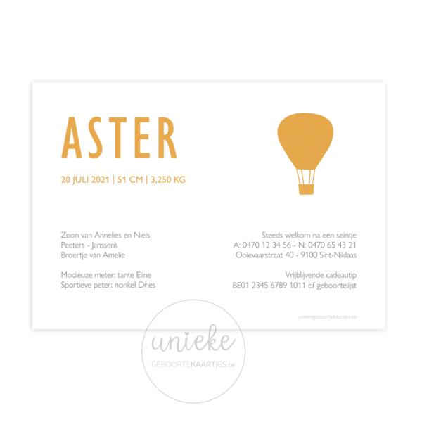 Achterkant van het kaartje van Aster