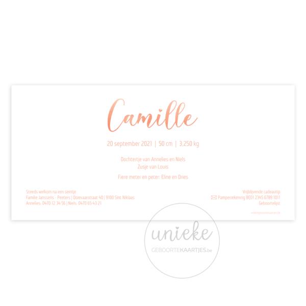 Achterkant van het kaartje van Camille
