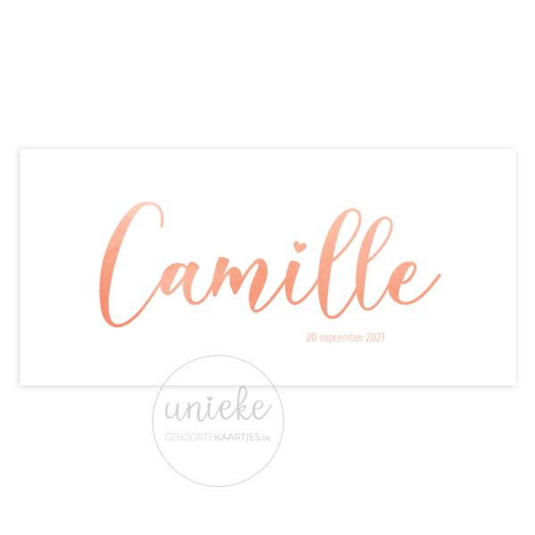 Voorkant van het kaartje van Camille