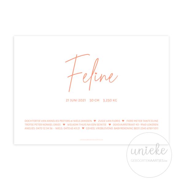 Achterkant van het kaartje van Feline