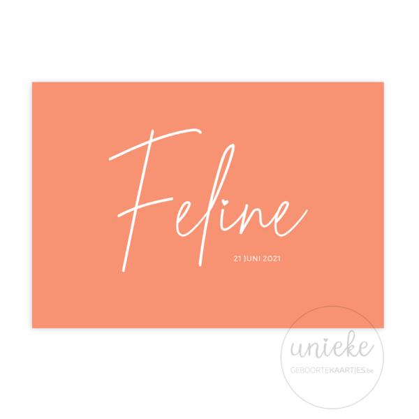 Voorkant van het kaartje van Feline