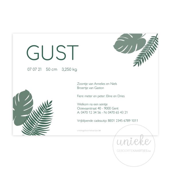Achterkant van het geboortekaartje van Gust