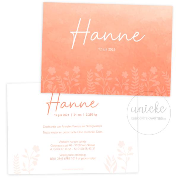 Geboortekaartje van Hanne
