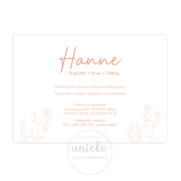 Achterkant van het geboortekaartje van Hanne