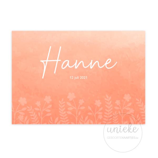Voorkant van het geboortekaartje van Hanne