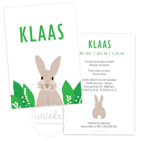 Geboortekaartje van Klaas