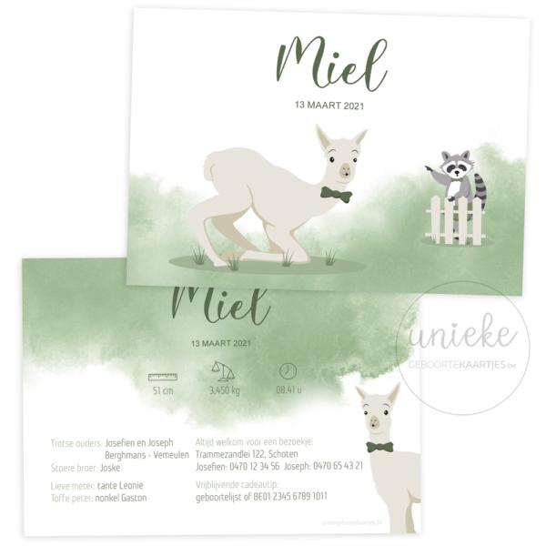 Geboortekaartje van Miel