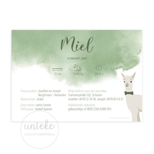 Achterkant van het geboortekaartje van Miel