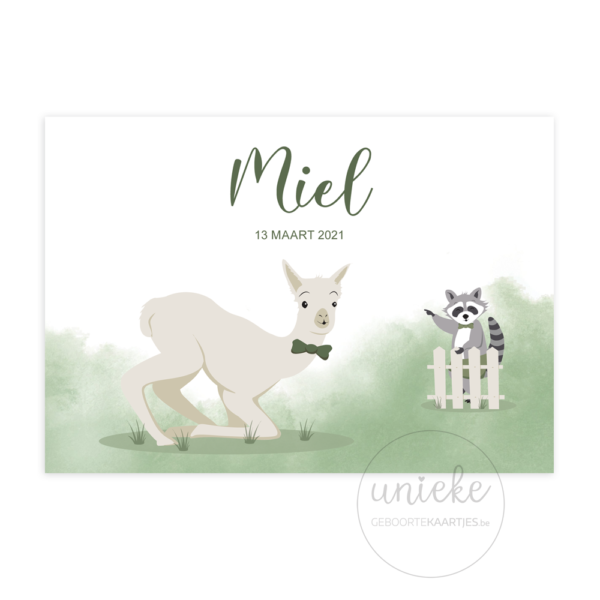 Voorkant van het geboortekaartje van Miel