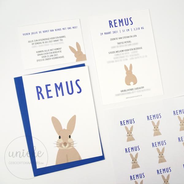 Drukwerk van Remus